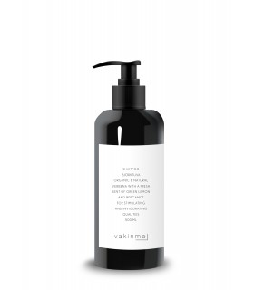 Björktuva shampoing