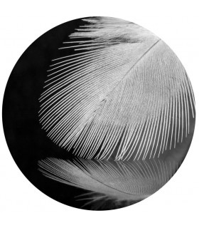 Circle feather